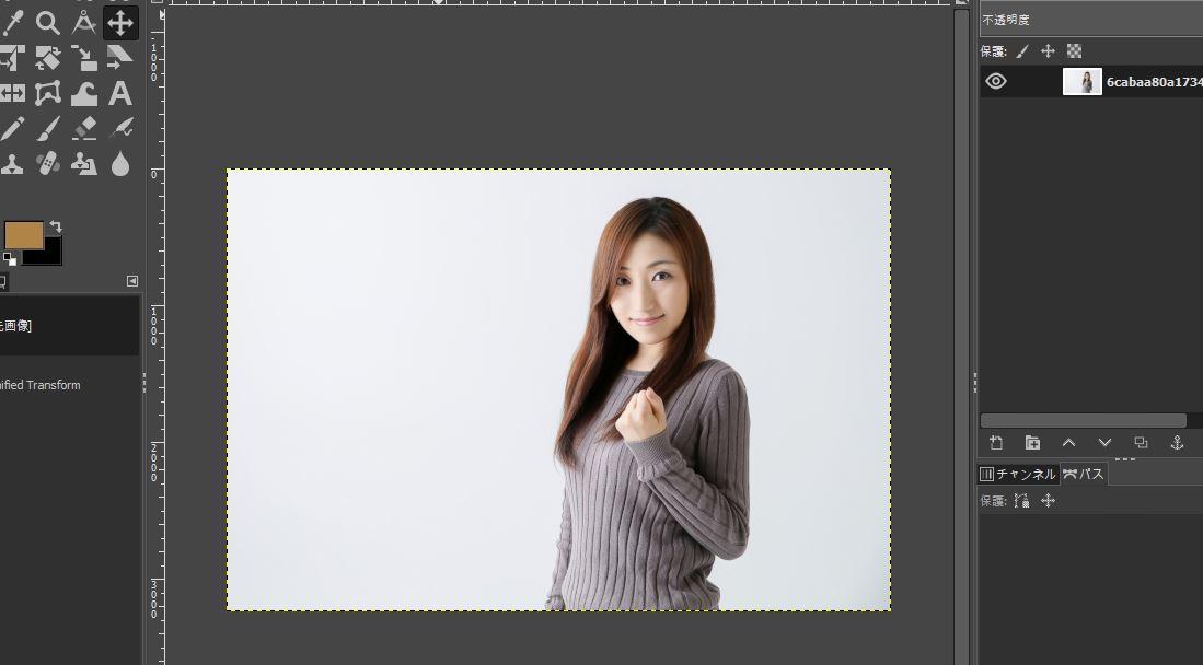 GIMPに読み込んだ写真
